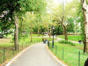 Central Park , NYC, a inicios de octubre.