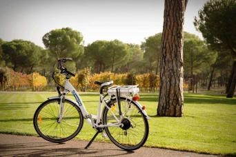 Bici en Finca Villacrece, Ribera del Duero. Foto de la página oficial Grupo Artevino