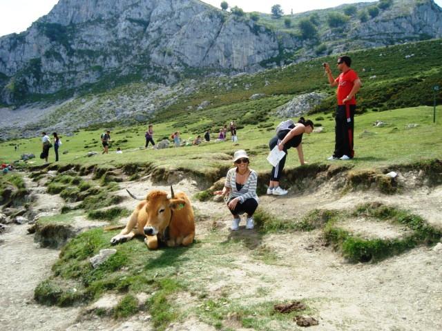 Covadonga 1
